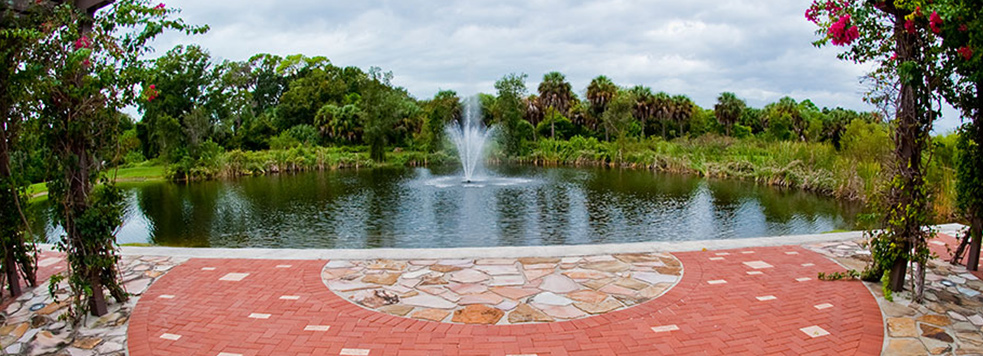 USF Sarasota Manatee promotes Student Success and Research in the local community