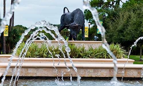 Campus Insider: Help USF Sarasota-Manatee campus students during 2020 Giving Challenge today and tomorrow